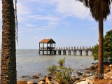 Staré dřevěné molo v Tampa Bay