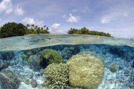Majuro, korálové útesy