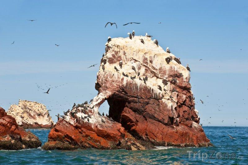 Fotka, Foto Útesy v rezervaci Paracas u města Pisco (Peru)