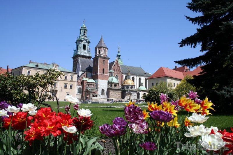 Fotka, Foto Zahrada před wawelskou katedrálou (Krakov, Polsko)