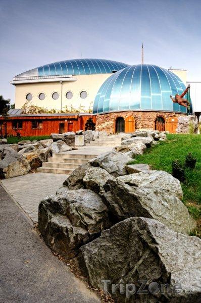 Fotka, Foto Bratislavská zoo, pavilon opic (Bratislava, Slovensko)