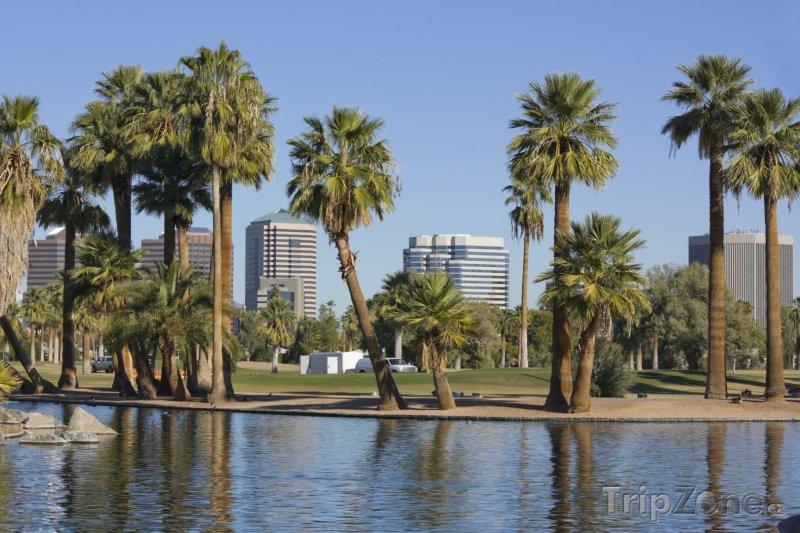Fotka, Foto Encanto Park, palmy u jezírka (Phoenix, USA)
