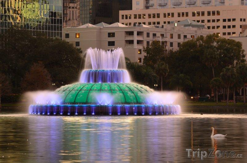 Fotka, Foto Jezero Eola, osvětlená fontána (Orlando, USA)