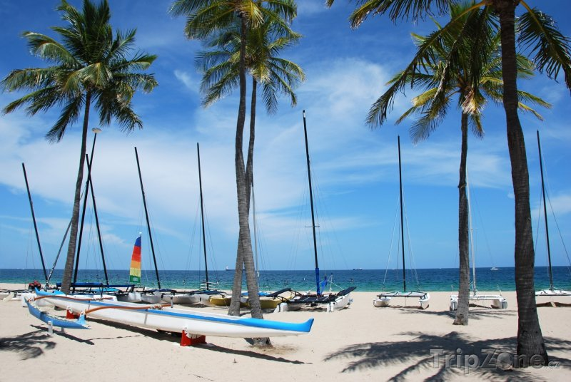 Fotka, Foto Katamarán na pláži (Fort Lauderdale, USA)