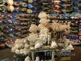 Prodejna mořských suvenýrů