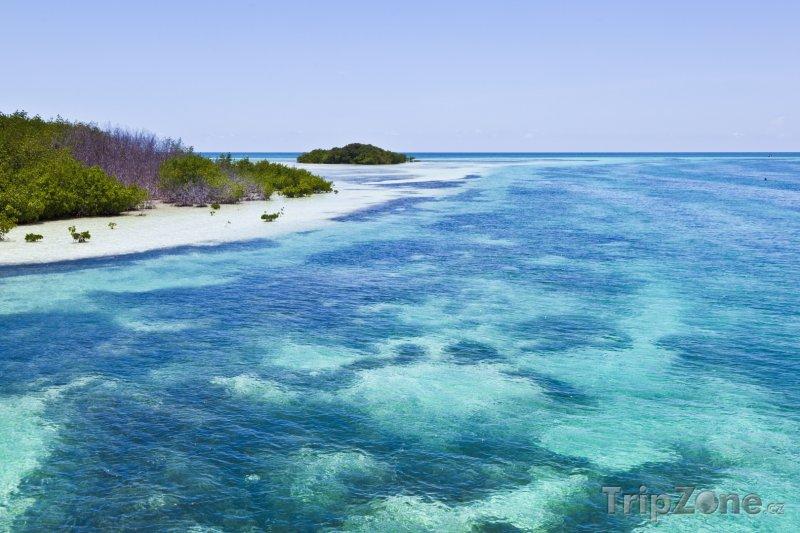 Fotka, Foto Průzračné moře u pobřeží (Key West, USA)