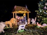 Vánoční program v zoo bude bohatý, foto: facebook.com