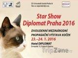 Výstava koček Star Show v hotelu Diplomat, foto: facebook.com