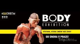 Výstava potrvá do 22. února do 30. června