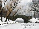 Central Park, Gapstow Bridge v zimě