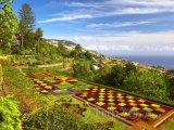 Funchal, botanická zahrada