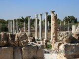 Salamis, ruiny města