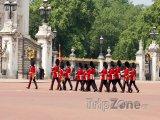 Stráže před Buckinghamským palácem