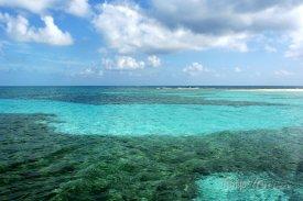 Bariéra Belize - druhý největší korálový útes na světě