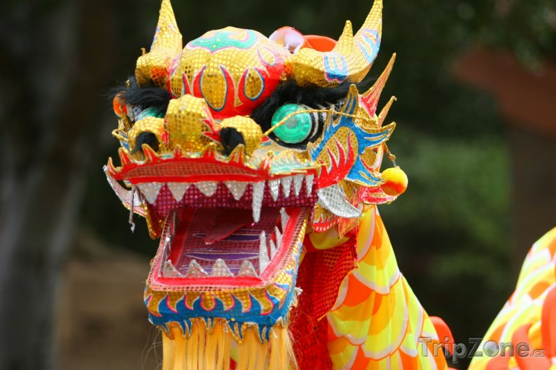 Fotka, Foto Drak na novoročním festivalu (Čína)