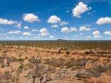 Krajina národního parku Chobe