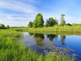 Krajina podél řeky Bereziny