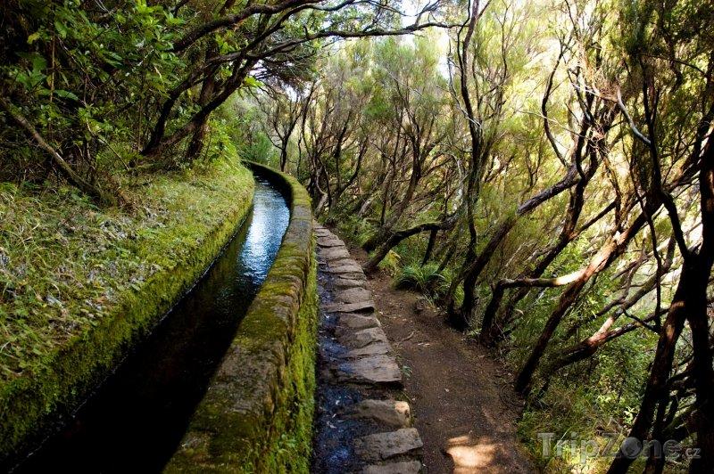 Fotka, Foto Madeira - zavlažovací kanál Levada (Madeira, Portugalsko)