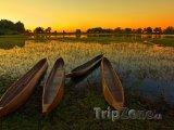 Močál řeky Okavango v poušti Kalahari
