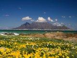 Stolová hora a Kapské město
