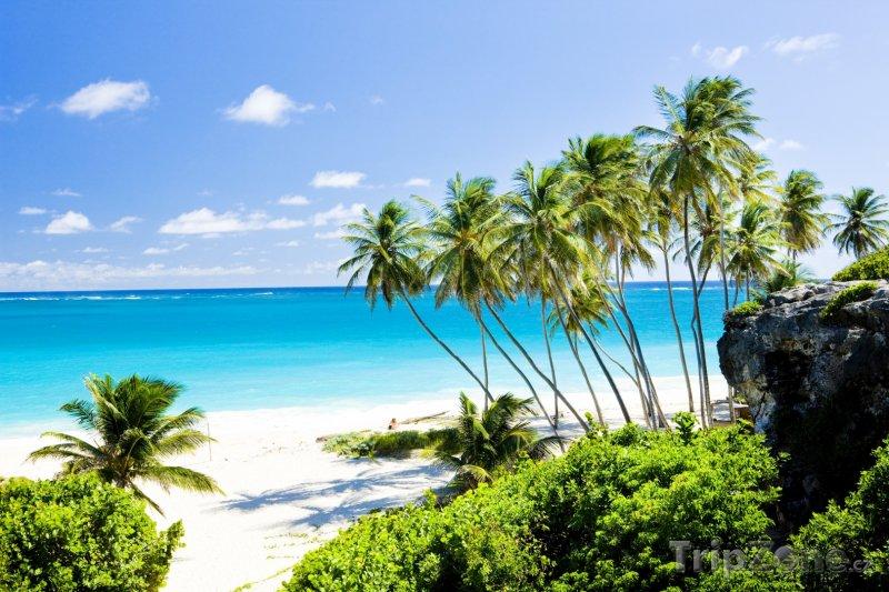 Fotka, Foto Záliv Bottom, obec Saint Philip (Barbados)