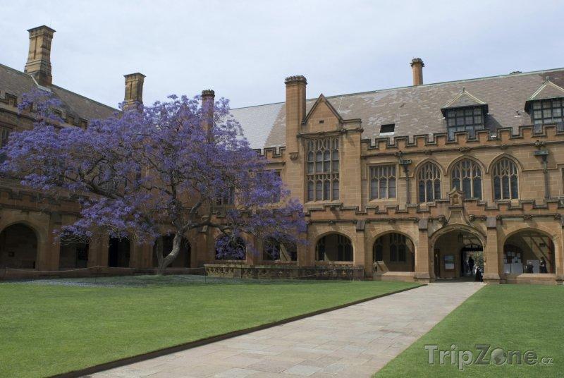 Fotka, Foto Budova University of Sydney (Sydney, Austrálie)