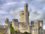 Cork, hrad Blackrock