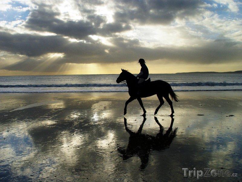 Fotka, Foto Kůň při západu slunce na pobřeží Atlantiku (Irsko)
