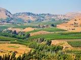 Pohled do krajiny a na město Golan