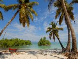 Pohodová pláž s palmami