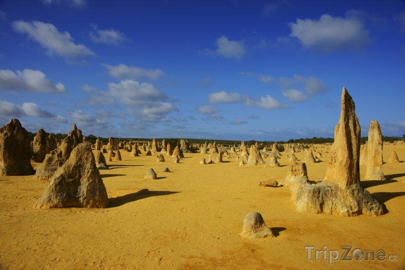Fotka, Foto Poušť Pinnacles (Austrálie)