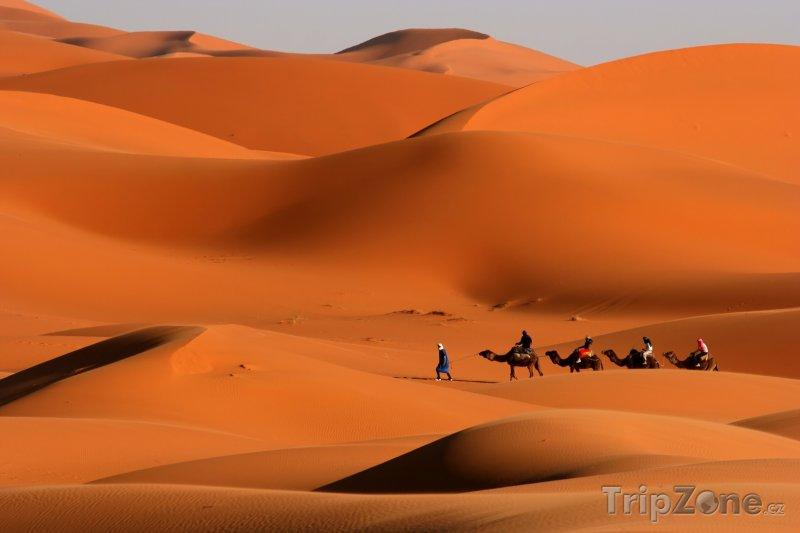 Fotka, Foto Poutníci na velbloudech (Tunisko)