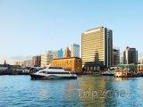 Přístav v Aucklandu