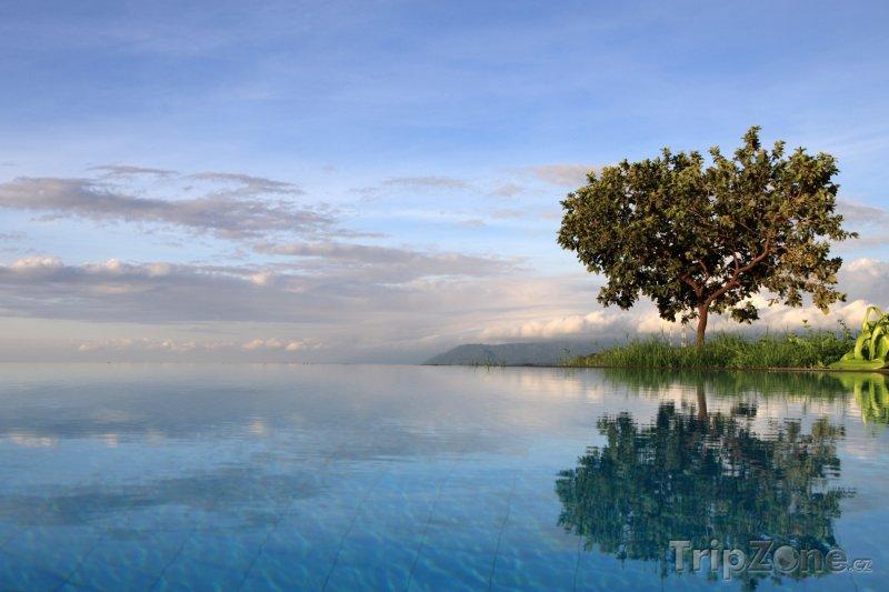 Fotka, Foto Tůňka u jezera Manyara (Tanzanie)