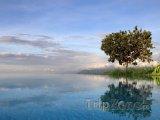 Tůňka u jezera Manyara