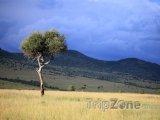 Velká příkopová propadlina na území Keni