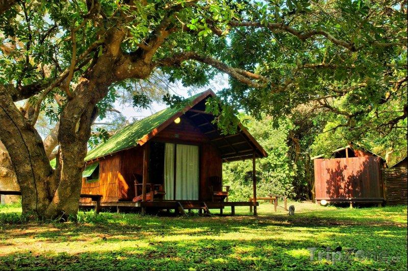 Fotka, Foto Chatky v Národním parku Sodwona (Jihoafrická republika)