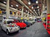 Fiaty 500 v Automobilovém muzeu