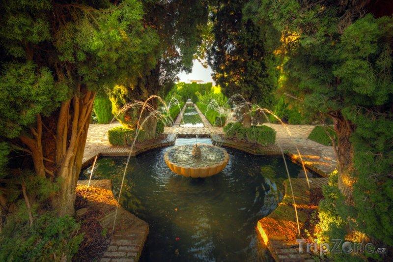Fotka, Foto Granada - zahrady u paláce Alhambra (Španělsko)