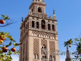 Katedrála v Seville
