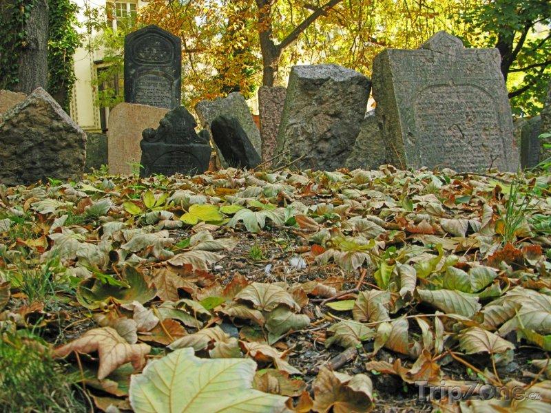 Fotka, Foto Náhrobky na Starém židovském hřbitově v Praze (Praha, Česká republika)