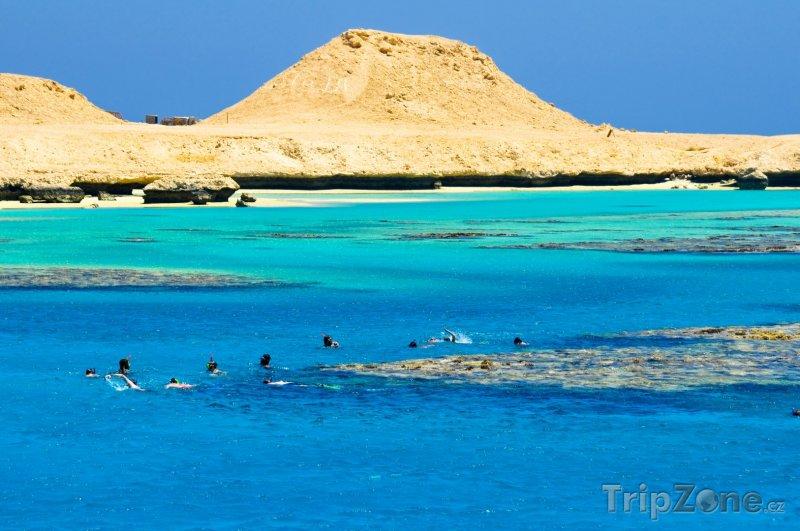 Fotka, Foto Potápějící se turisti u ostrova Giftun (Hurghada, Egypt)
