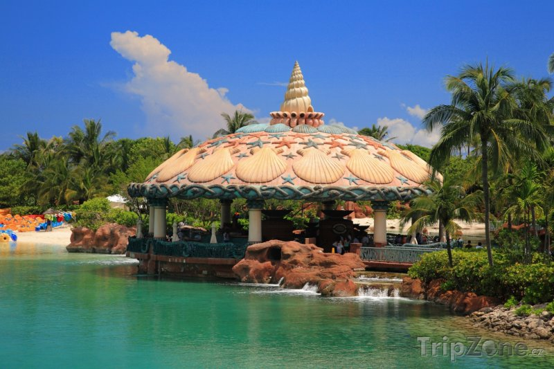 Fotka, Foto Restaurace na břehu Paradise Islandu (Bahamy)