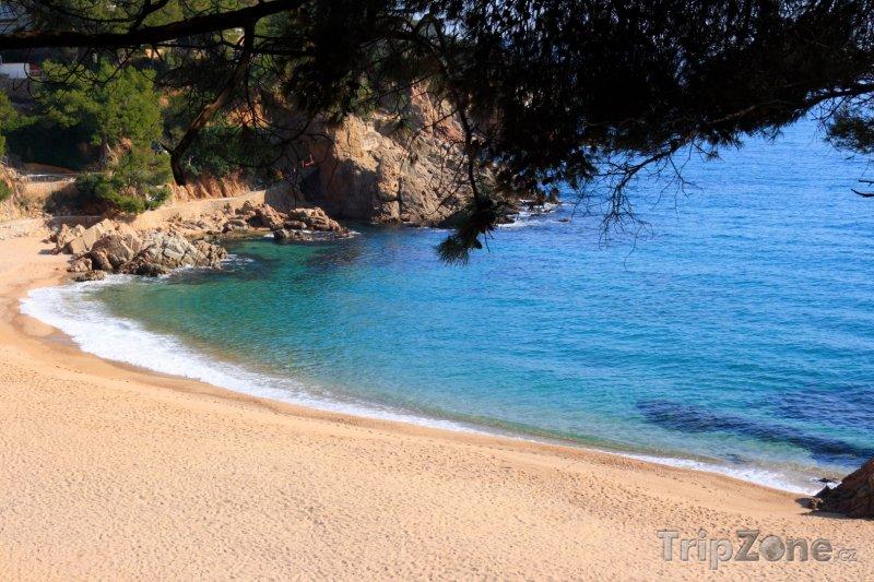 Fotka, Foto Costa del Maresme, pláž Cala Sant Francesc poblíž Blanes (Španělsko)