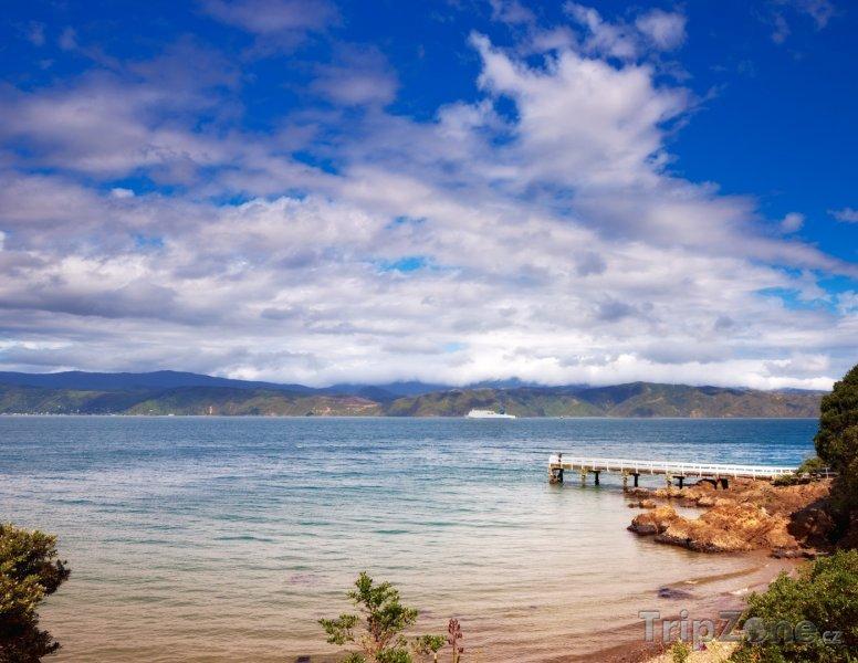 Fotka, Foto Karaka Bay (Wellington, Nový Zéland)