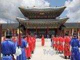 Královská stráž před palácem Gyeongbokgung