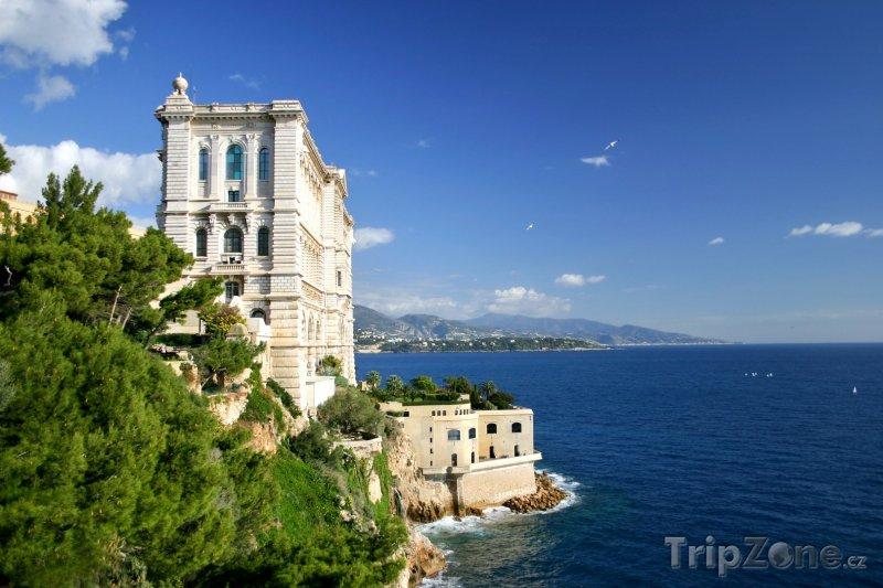 Fotka, Foto Monako, Oceánografické muzeum (Azurové pobřeží, Francie)