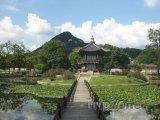 Park v Soulu