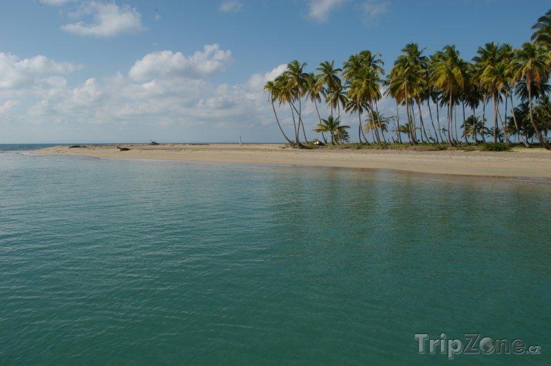 Fotka, Foto Pláž na Punta El Rey (Dominikánská republika)
