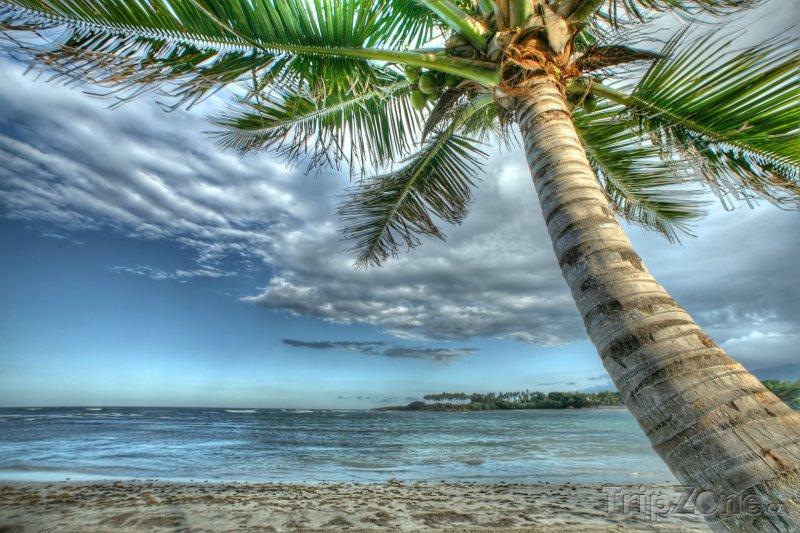 Fotka, Foto Pláž v Puerto Plata (Dominikánská republika)